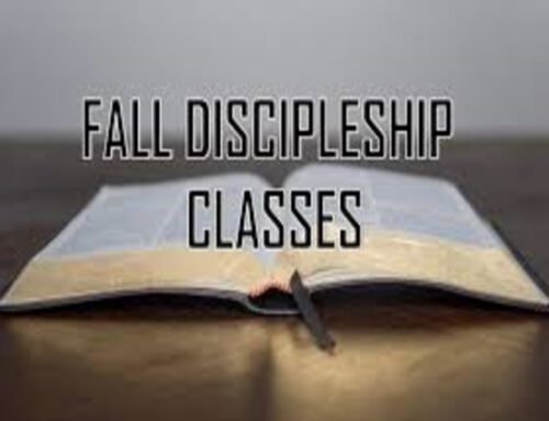 Fall Discipleship Groups