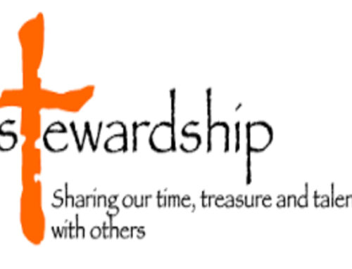 "Stewardship's "" Shining Our Light"" Video"